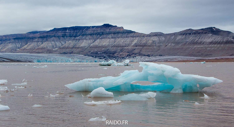 Icebergs dans le fjord d'Ekmann, Svalbard.