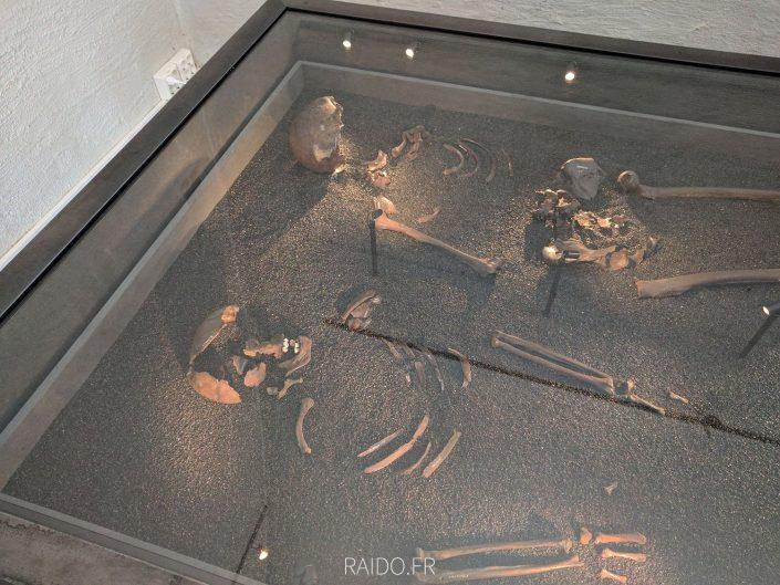 squelettes des bateaux vikings d'Oslo